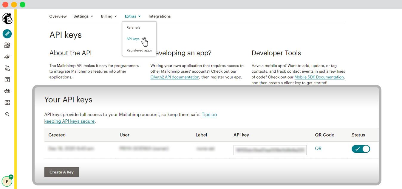 MailChimp Your API key section