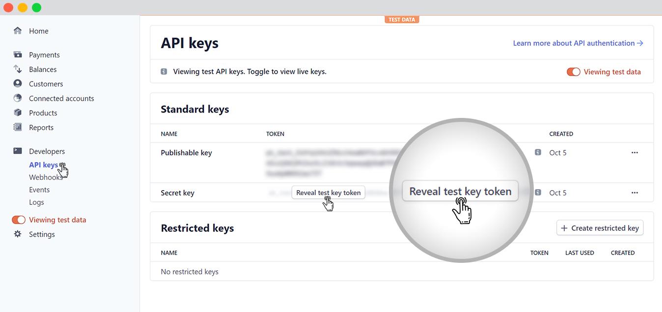 Connecting stripe-API Publishable Key