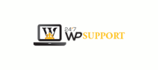 24×7 WP Support