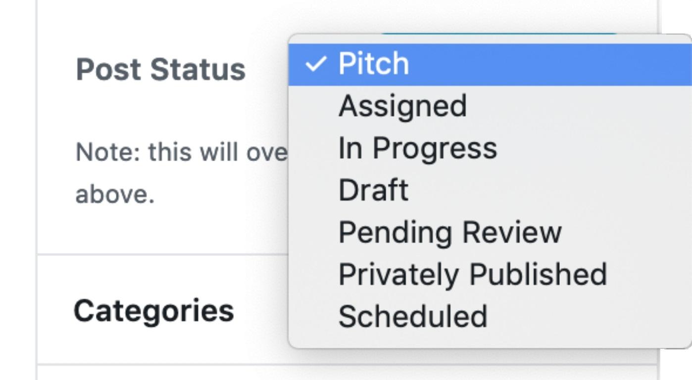 Custom Statuses in WordPress 2